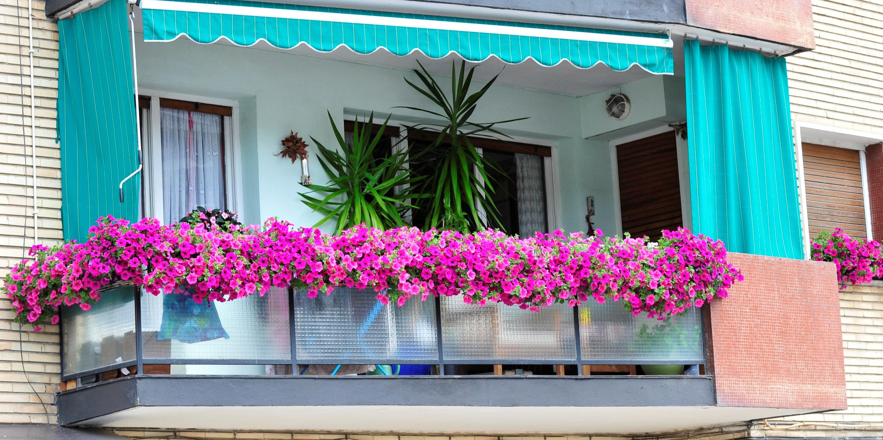 Convocada La X Edicion Del Concurso De Flores En Ventanas Y Balcones - Fotos-de-balcones-con-flores